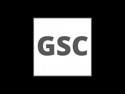Geometrisk stabilitetskontroll (GSC)